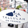 Tallulah on Thames in Newport, RI